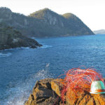 Telephone wire basket in progress, on the sea-sprayed rocks looking out to Hellfire Bluff, Tasmania.