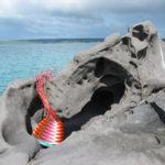 Chevron-patterned wire basket on weathered rocks at Antechamber Bay, Kangaroo Island.