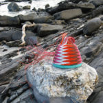 Brightly coloured telephone-wire basket on glistening rocks at Antechamber Bay, Kangaroo Island