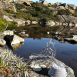 Telephone wire basket next to a tranquil alpine tarn on the mountain plateau above Lake Skinner, Tasmania.