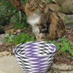 My beautiful tortoiseshell cat sitting daintily behind a purple, black and white wire basket.