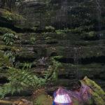 Telelphone wire basket in progress in front of a small waterfall a fern glade on kunanyi/Mt Wellington